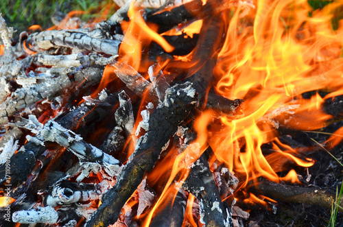 Tuinposter Grill / Barbecue Flame of campfires
