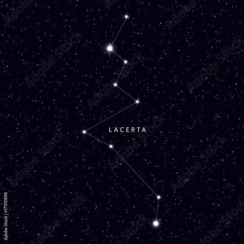 Zdjęcie XXL Sky Map z nazwą gwiazd i konstelacji. Astronomiczny symbol konstelacji Lacerta