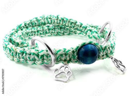 Foto op Plexiglas Dragen Collar for Dog - Paracord