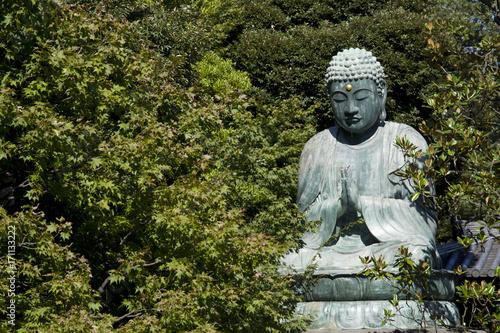 Fotografia  Buddha giapponese