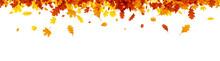 Autumn Banner With Orange Leav...