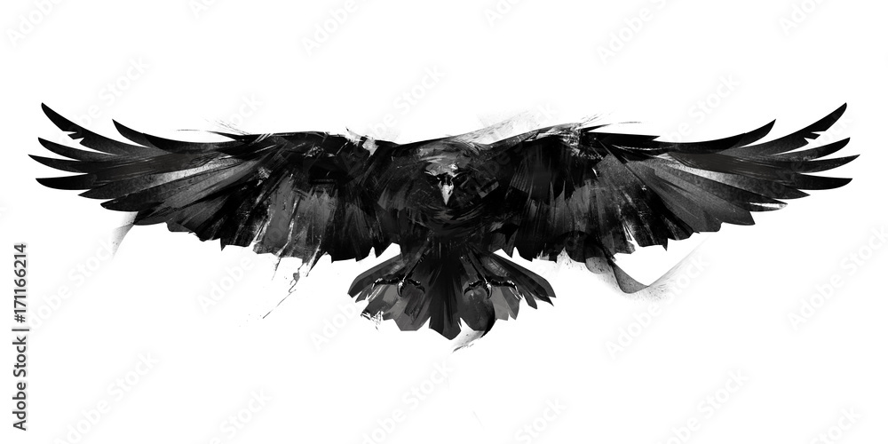 Fototapety, obrazy: isolated black and white illustration of a flying bird crow front