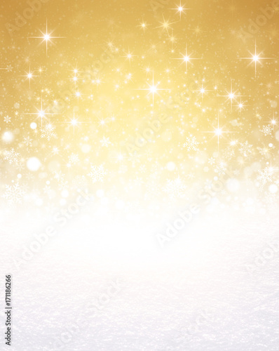 Ornamental Christmas background Canvas Print