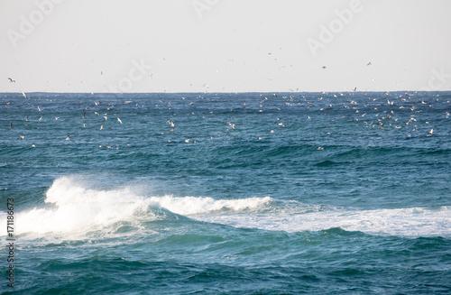 동해 바다의 풍경