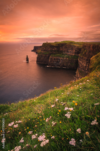 Spoed Foto op Canvas Koraal Cliffs of Moher at dusk - Clare, Ireland