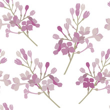Seamless Pattern. Pink Flowers Lilac Branch. Vector Background Banner.
