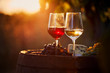 canvas print picture - Two glasses of white and red wine with food at sunset