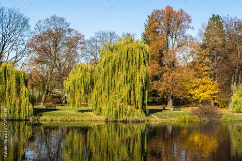 Plakat Jesień w parku