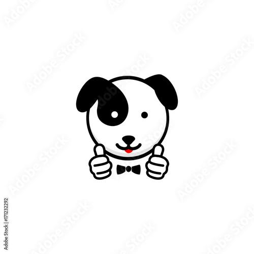 Photo  Dogie like