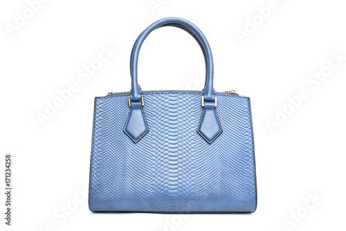 Blue fashion purse handbag on white background isolated Canvas Print