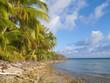 Südsee atoll mit Traumstrand palmen und türkis grünem Wasser tauch und Segelparadie