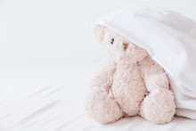 Teddy Bear Playful In White Bl...