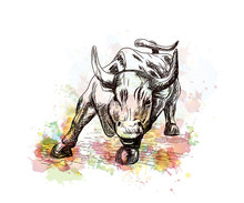 Watercolor Sketch Of Prosperity September 7, 2016 In New York City. Landmark Charging Bull In Lower Manhattan Represents Aggressive Financial Optimism. Vector Illustration.  Vector Illustration.