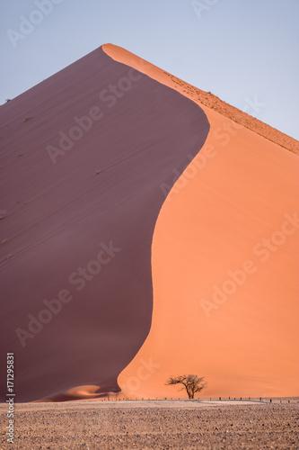 desert-dune-sossusvlei