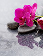 Spa background with orchid and stone.