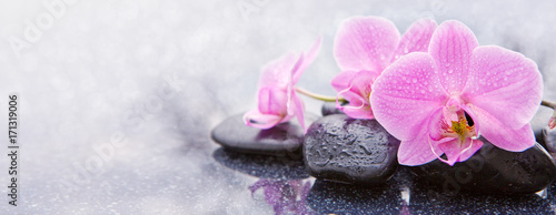 Pink orchid and spa stones isolated.