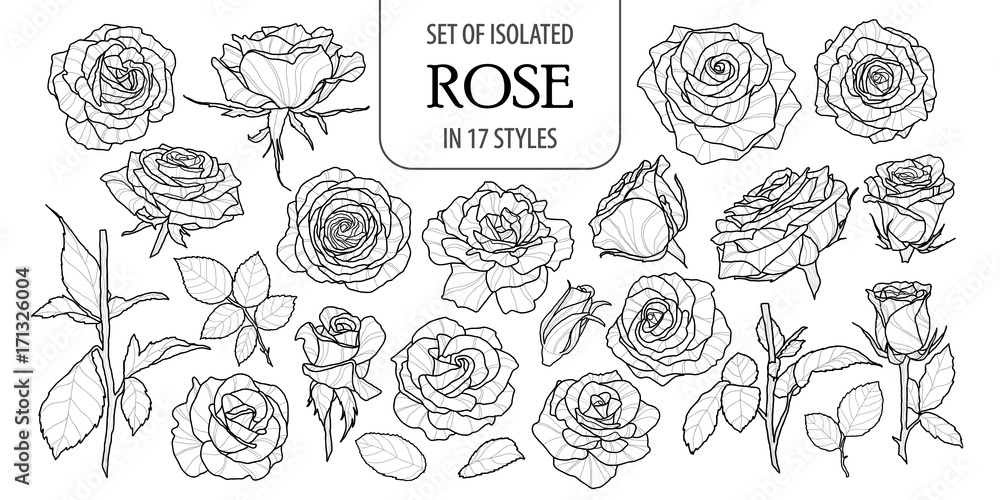Fototapety, obrazy: Set of isolated rose in 17 styles. Cute flower illustration in hand drawn style. Black outline and white plane on white background.