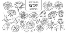 Set Of Isolated Rose In 17 Sty...
