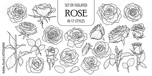 Set of isolated rose in 17 styles Canvas Print