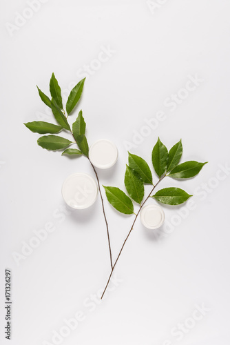 organic cream with leaves