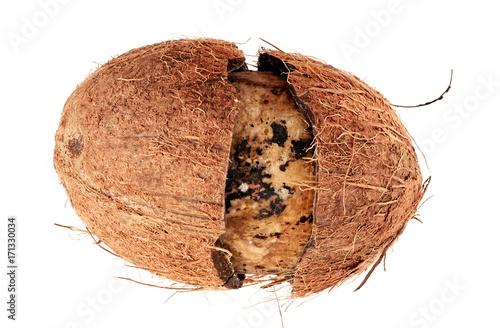 Valokuvatapetti Damaged Coconut Isolated on White