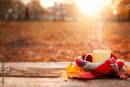 Tea mug covered with warm scarf on wooden surface