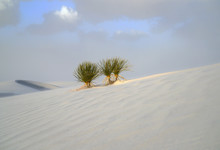 White Sands National Monument - Windy