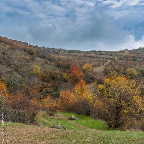 Fototapety, obrazy: Fall landscape on mountain pasture Demerdzhi, Crimean peninsula