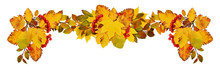 Autumn Leaves And Red Berries In A Border Arrangement
