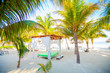 Paradise view of exotic tropical empty sandy beach with umbrellas and beach beds