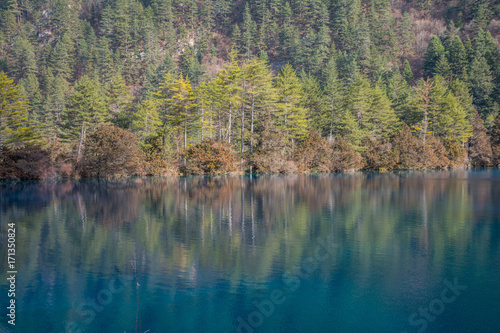 Photo sur Aluminium Gris traffic Lake on a background of forest mountains
