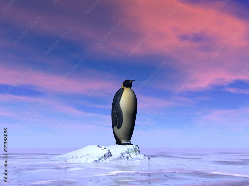 Single emperor penguin - 3D render