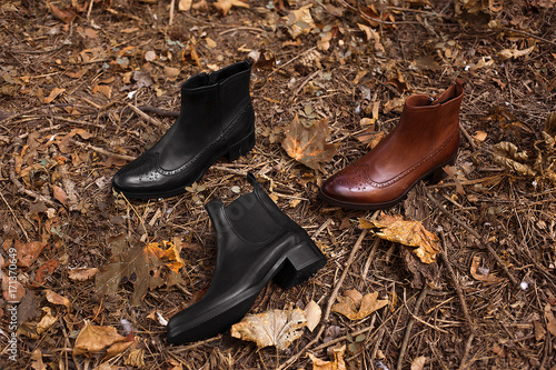Three fashion leather women's chelsea boots on the ground covered with yellow autumn leaves and branches of trees in the autumn forest or park Canvas Print