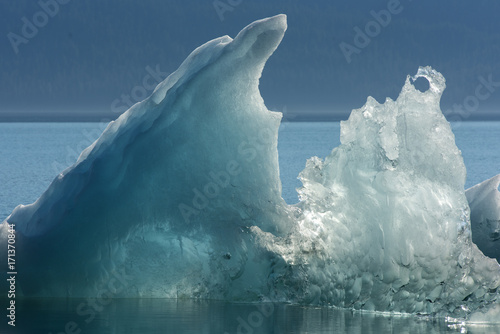 Poster Glaciers Iceberg Sculpture, Endicott Arm, Alaska