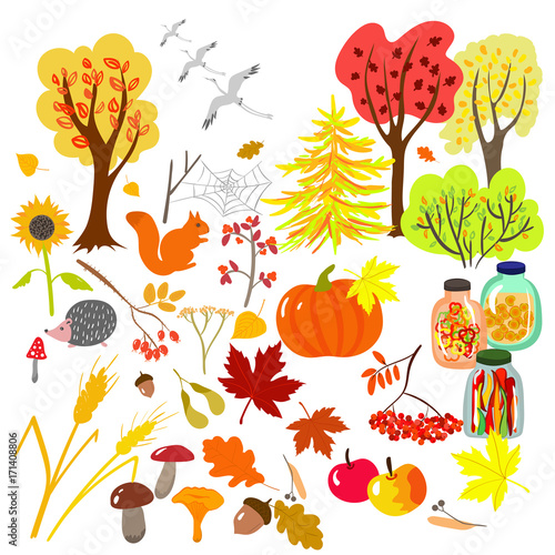 Cute Autumn Set Of Plants Leaves Harvest And Characters Fall Season Collection Of Vector Isolated Elements In Cartoon Style Buy This Stock Vector And Explore Similar Vectors At Adobe Stock