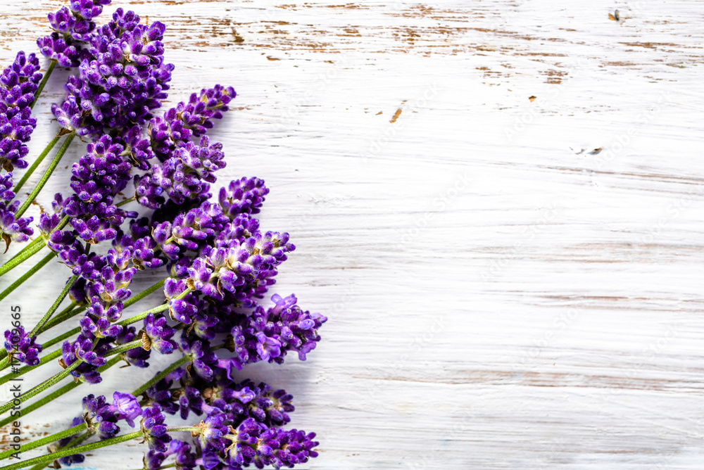 Valokuva  Fresh flowers of lavender bouquet, top view on white wooden background