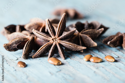 Whole star anise on blue wooden background, Canvas Print