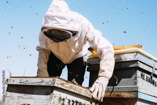In de dag Bee Beekeeper working collect honey.