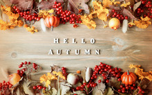 Autumn Background With Hello Autumn Letters And Autumn Nature Berries, Pumpkins And Flowers
