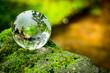 Leinwandbild Motiv コケとガラスの地球儀
