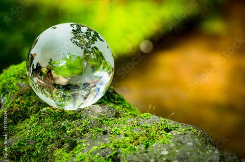 Obraz コケとガラスの地球儀 - fototapety do salonu