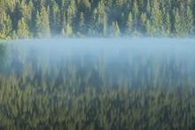Symmetry View Of Trillium Lake