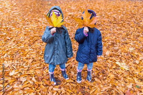 Fotografía  Little girls with a hidden face with a maple leaf in an autumn park