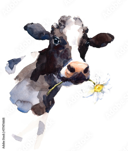 Fotografia Watercolor Cow with a Daisy Flower in its mouth Farm Animal Portrait Hand Painte