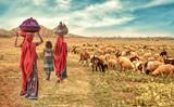 grupa wiejska dziewczyna wraca do domu ze stadem owiec - 171477854
