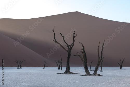 dead-camelthorn-trees-and-red-dunes-in-deadvlei-sossusvlei-namib-naukluft-national-park-namibia