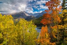 Colorful Aspen Above Bear Lake...