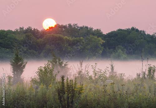 627-73-springbrook-sunrise-pink