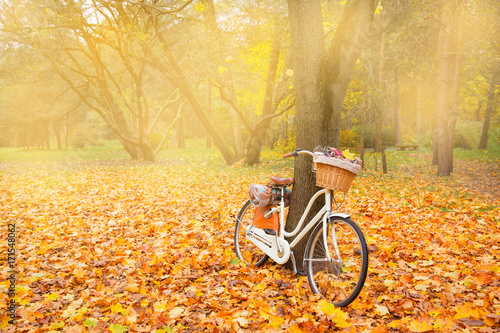 Papiers peints Velo vintage bicycle with basket picnic set hot drinks in autumn park background copy space