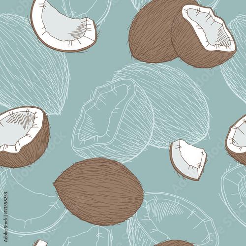 kokosowy-kolor-graficzny-wzor-szkic-wektor-ilustracja